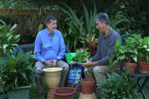 Former Extension Agents Tom MacCubbin and Ashton Ritchie share a laugh during a video shoot for Tom's website:  www.hisandhersgardening.com