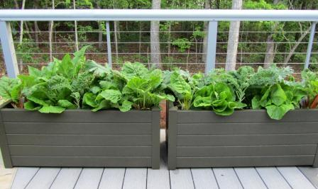 Veggie Deck Planters