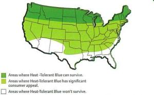 This map helps you figure out where Scotts Heat Tolerant Blue will grow best