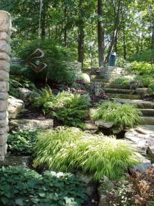 Private garden in Ohio with loads of plant ideas for a shaded hillside.
