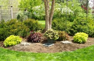 The smaller insert planters can be filled with seasonal plants that will not suffer tree root competition.
