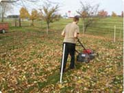 "Rather than raking your tree leaves, save time by mowing them to dime size just prior to feeding. This will help them ""compost on your lawn"".  Click here to watch this video to learn more."