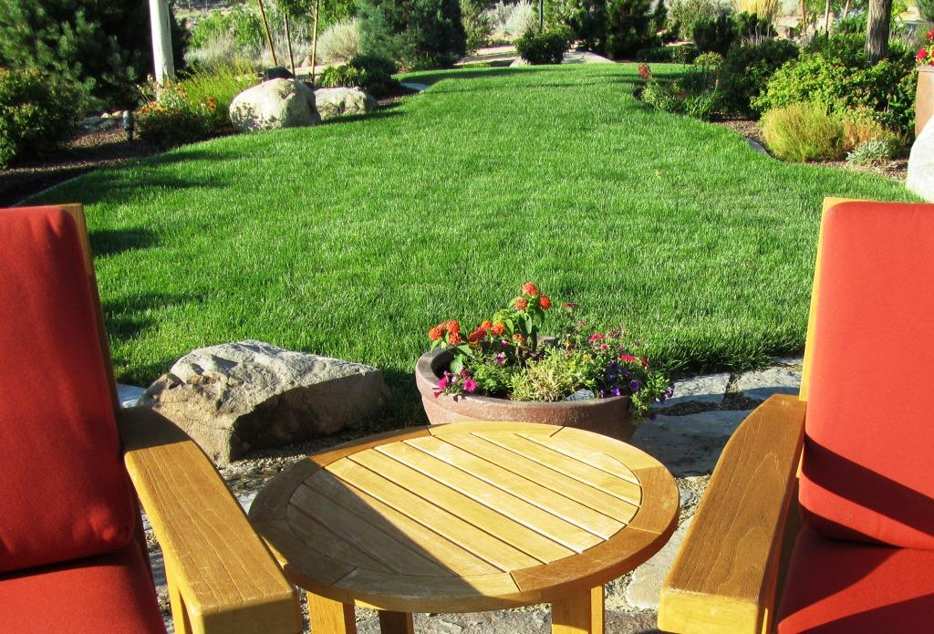 The Secret to a Darker Green Lawn   Tips and Tricks for a