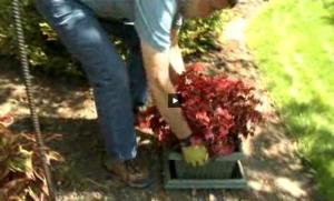 """Click here to watch a short video showing how we made our """"pocket planters"""""""